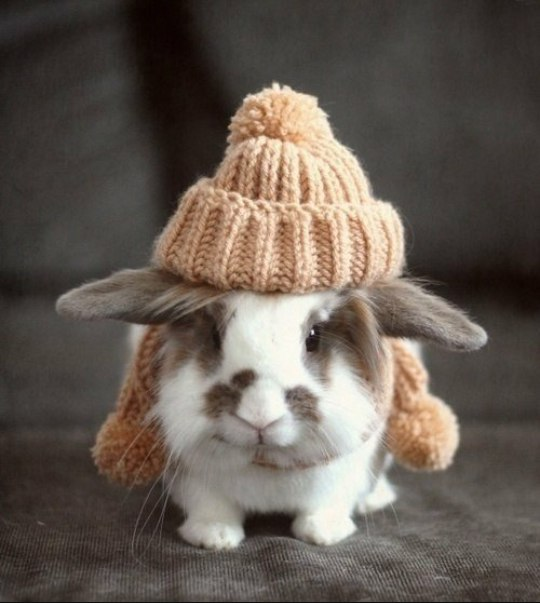 Теплее одеваемся.