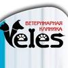 Ветеринарная клиника Велес г.Пермь