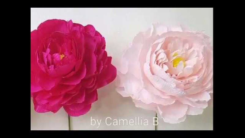 DIY- How to make paper Peony flower from crepe paper - Inter 1- Hoa mẫu đơn giấy nhún