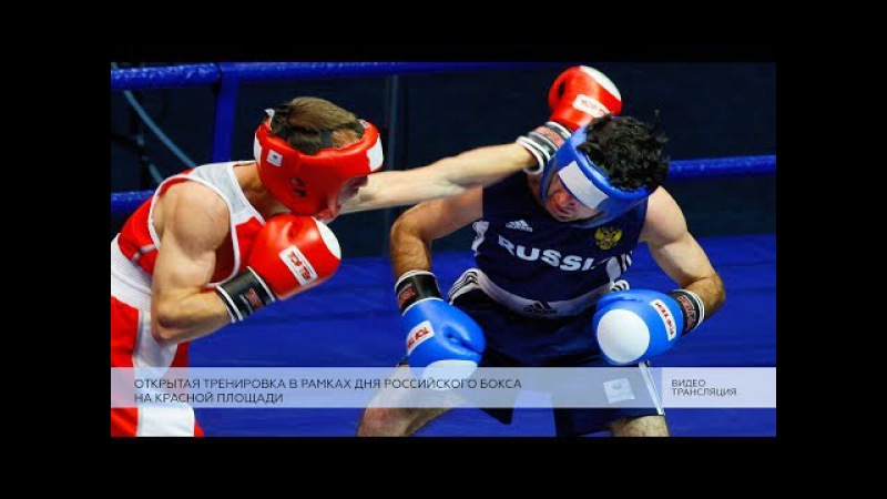 Празднование Дня российского бокса 4к