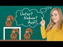 German Lesson (108) - Two Way Prepositions - Dative OR Accusative - A2