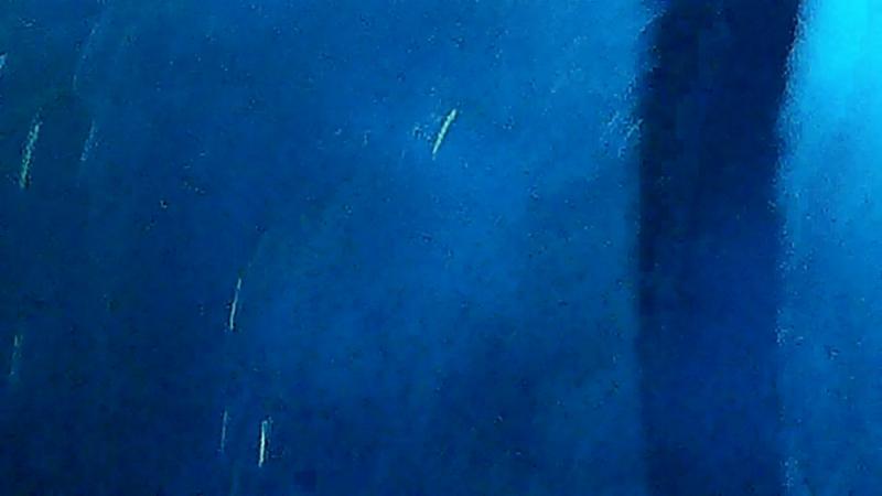 Дайте Танк (!) - Вуайерист (20052017 Ионотека. СПб)