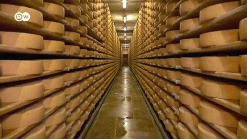 Ein ganz besonderer Käse der Gruyère