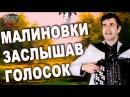 МАЛИНОВКИ ЗАСЛЫШАВ ГОЛОСОК под баян - поет Вячеслав Абросимов