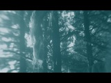 Peter Broderick - Up Niek Mountain (Official Music Video)