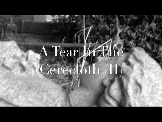 Kayfabe - A Tear in the Cerecloth (II)