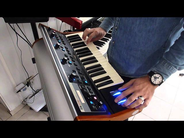 Moog Little Phatty - Pink Floyd Style Improvisation