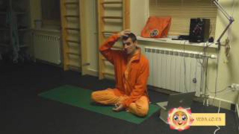 Вальмики дас - Практика йоги