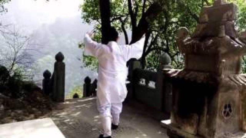 Wu Dang Mi Chuan Wu Xing GongWhite crane) 武当秘传五形养生功之鹤形功【Xu Wei Han】