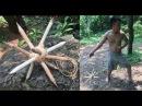 Weapons Danger Primitive (Canarium)* / Survival Skills Primitive / 30.07.2017