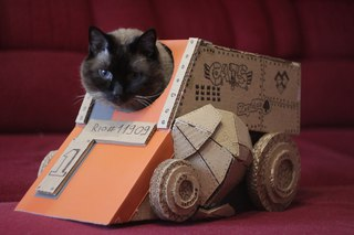 как скачать игру Cats Crash Arena Turbo Stars через торрент - фото 7