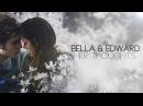 Bella edward | о чём ты думаешь