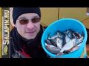 Зимняя рыбалка. Плотва на поплавок и мормышку, трудовая рыбалка.