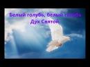 Белый Голубь Песня на Троицу