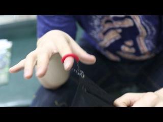 Влагозащитный кошелёк Splav «Mini». Обзор