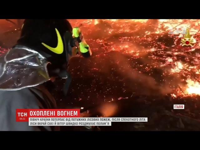 Північ Італії охопили жахливі лісові пожежі
