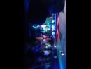 Audi scool Dj Groove