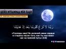 Шейх Мухаммад аль Мадхали ОТ ЗАЩИТНИКА СУННЫ ДО ВЕРООТСТУПНИКА