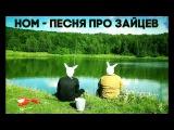 НОМ - Песня про зайцев NOM - Hare song