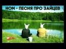 НОМ - Песня про зайцев / NOM - Hare song
