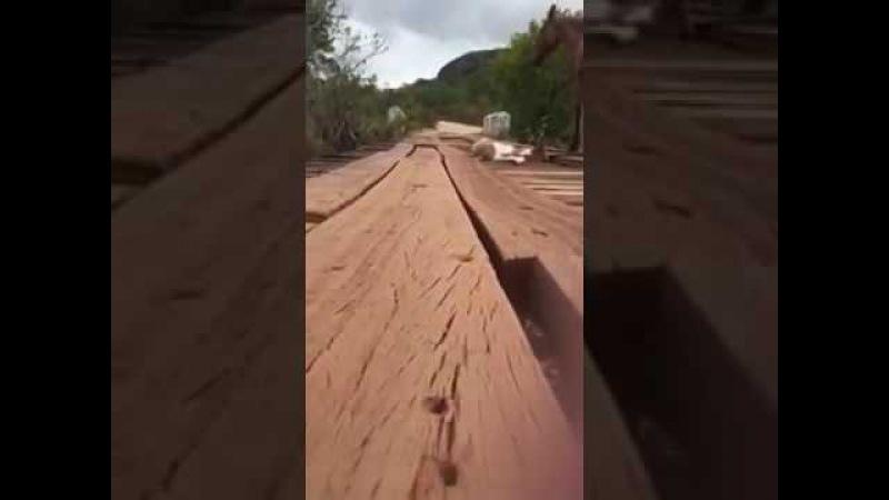 Спасение жеребенка, провалившегося между досок моста