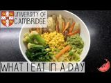 A DAY IN MY LIFE AT THE UNIVERSITY OF CAMBRIDGE + WHAT I EAT IN A DAY VEGAN FT. MICROWAVE CHIPS