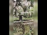 Город-призрак Ткуарчал и Акармара в Абхазии, останется в памяти на очень долго🏚❗️Этой осенью, в октябре мы решили променять кра