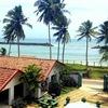 Шри Ланка Отель +94779473028 Viber/What's up Юли