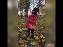 Осень 🍂 прогулка Мисс Алисы