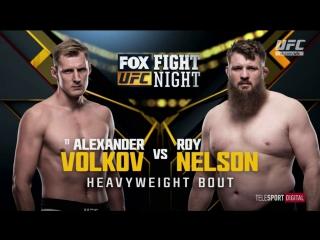UFC FOX 24 Александр Волков vs Рой Нельсон обзор боя