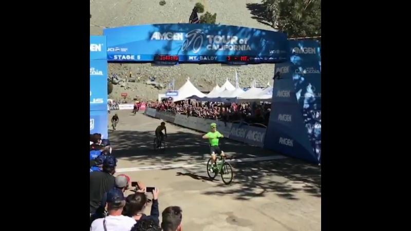 Пятый этап Тура Калифорнии завершился победой Эндрю Талански из Cannondale-Drapac AmgenTOC велоспорт