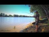 Рыбалка на закидушки, донку, спиннинг. Сом на червя, крупный карась, густера, щука...