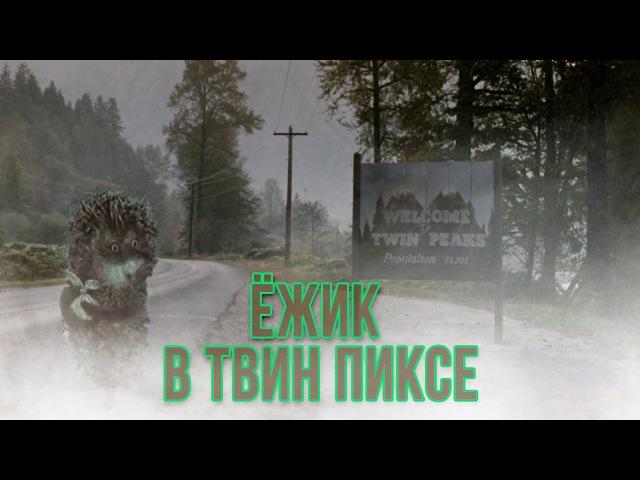 ЕЖИК В ТВИН ПИКСЕ I SUPER_VHS МЭШАП