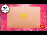CICI&SISI обзор и тест пластины/Review & Swatch stamping plate CICI&SISI