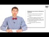 Обществознание (ЕГЭ). Урок 41. Трудовое право. Права и обязанности работника. Трудовой договор