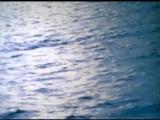 Приключения капитана Врунгеля Праздник Нептуна
