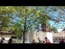 Аттракцион Центрифуга в Трипс-Дрилл с близкого расстояния