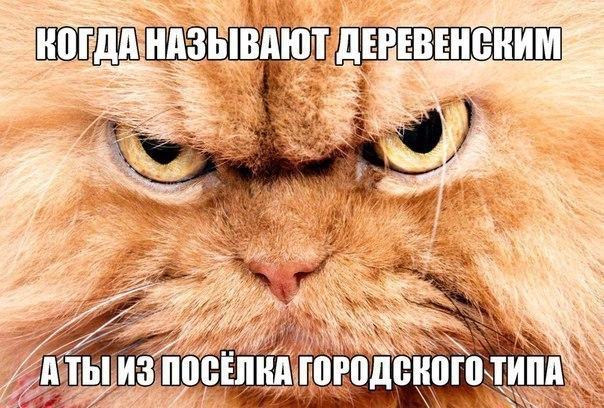 Кирилл Вязовов | Зеленоград