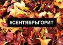 Владимир Березин фото #26