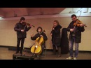 Квартет виртуозов в подземном переходе на Петроградской