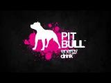 Pit Bull Energy adv 2017