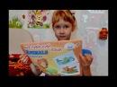 English for kids Английский язык для детей Учим животных Animals Bird Птица