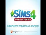 The Sims 4 «Кошки и собаки» | Редактор создания питомца