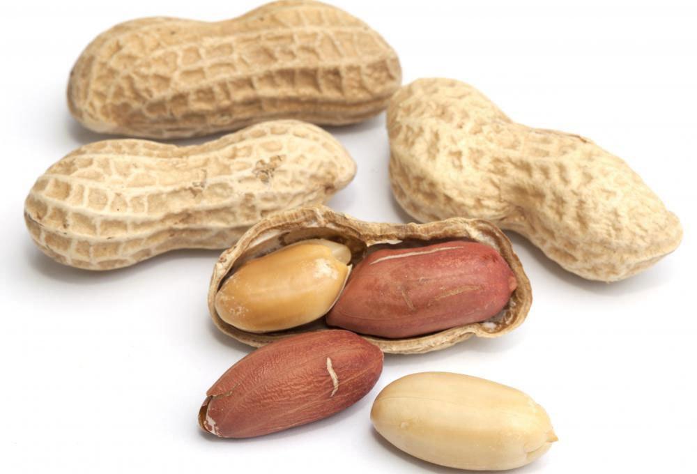 Потребление арахиса снизит уровень холестерина