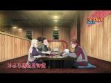 Наруто Ураганные хроники Naruto Shippuuden (2 сезон)  491