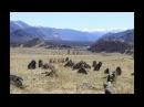 Алтай. Священные земли. Фильм-путешествие. The Altai Republic.