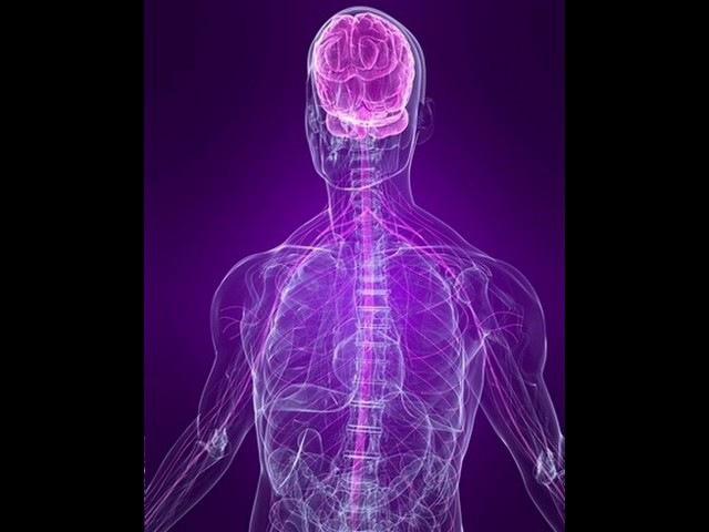 Настрой Сытина - Исцеление нервной системы
