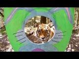 Tiger Easter Bunnies