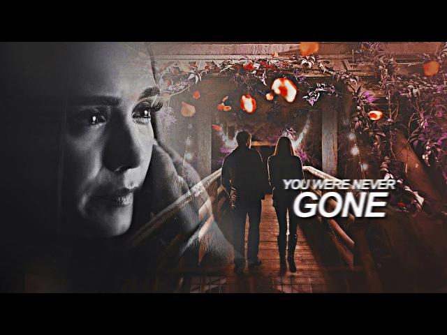 Stefan elena | you were never gone [1x01-8x16]