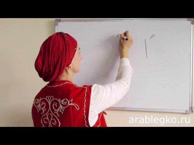 Арабский язык для начинающих - Словарный запас. Грамматика арабского языка